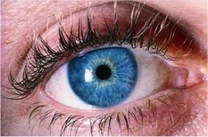 oeil et pupille 300x198 12 astuces pour devenir un parent détecteur des mensonges